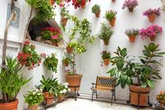 Våren blommar garnering av det gamla huset, Cordoba, Spanien, Europa Royaltyfri Bild