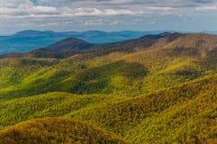 Våren färgar i de Appalachian bergen i den Shenandoah nationalparken, Virginia. Arkivbild