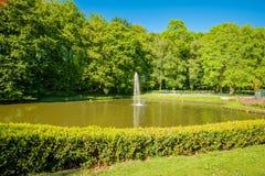 Våren har fjädrat på pet M Rogmanspark i Almelo Nederländerna Royaltyfri Bild
