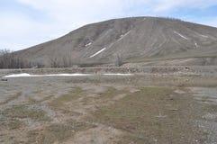Våren kom till kullarna Arkivfoton
