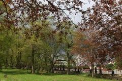 Våren på den gamla stadkyrkogården i Karlovy varierar royaltyfri bild