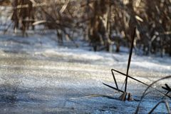 Våren snö, snö smälter, solen, gräs, floden royaltyfria foton