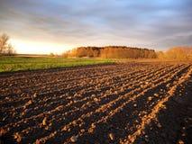 Vårfält Fotografering för Bildbyråer
