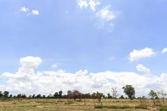 Vårfält och molnig himmel Royaltyfri Bild