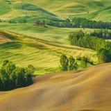 Vårfält runt om Pienza Arkivbild