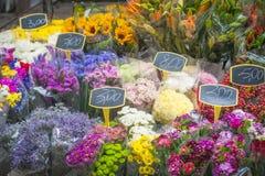 Vårfärg blommar till salu på marknad Royaltyfri Foto