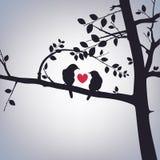 Vårfåglar på ett träd Arkivfoto