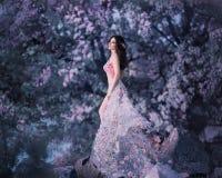 Vårfen står på bakgrunden av en blomning, rosigt träd Hon bär en rosa klänning med blommor som fladdrar royaltyfria foton