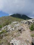 Vårfjärdslinga i Saba Royaltyfri Fotografi