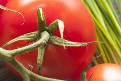 Vårgrönsaker Arkivbilder