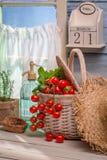 Vårgrönsaker på en solig dag Royaltyfria Bilder