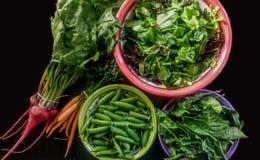 Vårgrönsaker på svart bakgrund royaltyfri fotografi