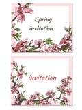 Vårkort med delikata blommor Vektorillustration av rosa och vita blommor royaltyfri illustrationer