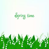 Vårkortbakgrund med liljekonvaljen Arkivbild