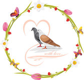 Vårkrans med fjärilar och älskaduvor Royaltyfri Fotografi