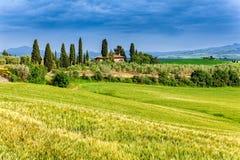 Vårlandskap av fält Tuscany Royaltyfri Fotografi