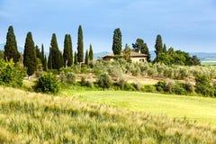 Vårlandskap av fält Tuscany Fotografering för Bildbyråer