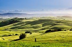 Vårlandskap av fält Tuscany Royaltyfria Foton