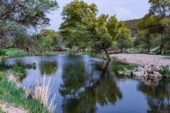 Vårlandskap av spegelträdfloden Royaltyfria Foton