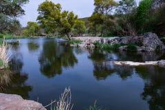 Vårlandskap av spegelträdfloden Royaltyfri Foto