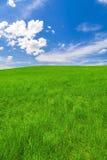 Vårlandskap, fält och blå himmel arkivfoton