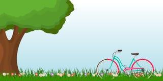 Vårlandskap med en kvinnacykel på gräs och ett träd Royaltyfri Bild