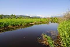 Vårlandskap med floden och ängen Arkivbilder