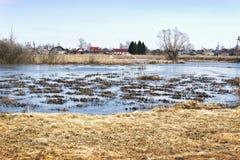 Vårlandskap med vatten, översvämmad äng Royaltyfria Foton