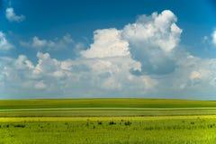 Vårlandskap med vita moln Royaltyfri Fotografi