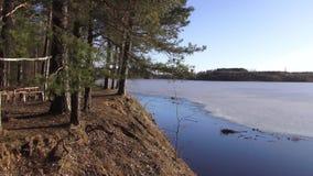 Vårlandskap mellan villebrådet och floden västra Dvina lager videofilmer