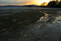 Vårlandskap på en sjö med smältande kuster i aftonen royaltyfri bild
