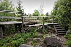 Vårlandskap - svarta Forest Hiking på den Lothar banan i den svarta skogen, Tyskland Fotografering för Bildbyråer