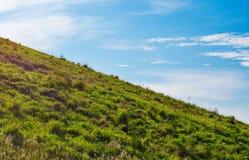 Vårlandskap under blå himmel royaltyfria bilder