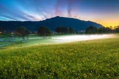 Vårlandskapet med en äng av gula smörblommor, träd täckte i dimma och berg på skymning arkivbilder