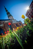 Vårlynne i gamla Riga Royaltyfri Fotografi