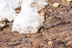 vårmelts snöar strömmarna av vatten som körs längs jordningen royaltyfria bilder