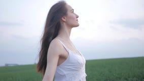 Vårmodeståenden av en härlig lycklig ung kvinna i den vita klänningen med långt brunt hår går det gröna fältet i lager videofilmer