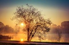 Vårmorgonlandskap på soluppgång arkivbild