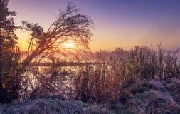 Vårmorgonsoluppgång på den utomhus- naturen Sceniskt landskap av den färgrika frostiga vårmorgonen Gryning över den lösa sjön Arkivfoto