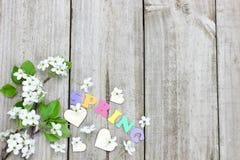 Vårpäronträdet blomstrar, och wood hjärtor gränsar wood bakgrund Arkivfoton
