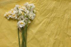 Vårpåskliljabouqet på den gula hantverkpappersbakgrunden Fotografering för Bildbyråer
