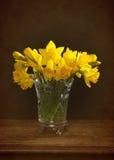 Vårpåskliljor Royaltyfri Foto