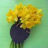 Vårpåskliljor Royaltyfria Foton