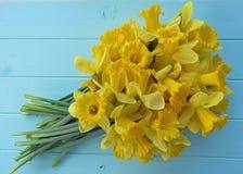 Vårpåskliljor Arkivbild