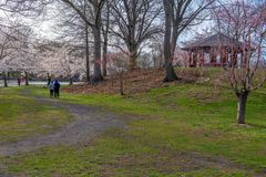 Vårpromenad i parkera Royaltyfri Fotografi