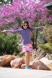 Vårrosa färgblomningar Royaltyfri Fotografi