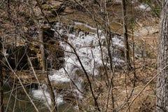 Vårsikten av Fenwick bryter vattenfallet arkivbilder