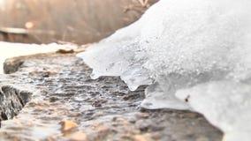 Vårsmältning av is arkivfilmer