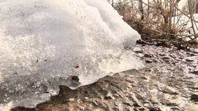 Vårsmältning av is lager videofilmer