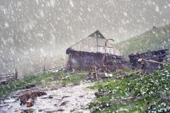 Vårsnöstorm Chernogora Royaltyfria Bilder
